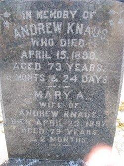 Andrew Knaus