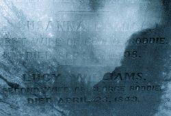 Susannah Parham <i>Hill</i> Boddie
