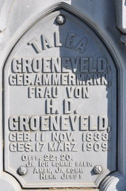 Talea <i>Ammermann</i> Groeneveld