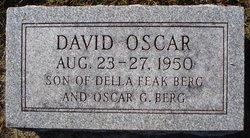David Oscar Berg