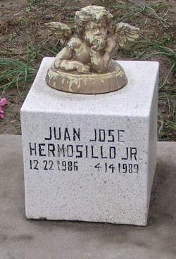 Juan Jose Hermosillo, Jr
