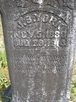 Joseph B York