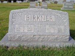 Caroline E Lena <i>Voges</i> Birkner