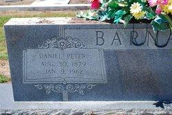 Daniel Peter Barnard