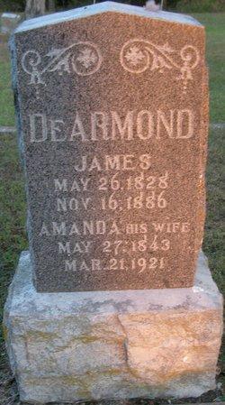 James DeArmond