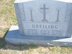 Andrew F Dreiling