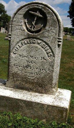 Capt Peleg W. Gibbs
