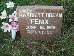 Harriet Odean <i>Roller</i> Fenix