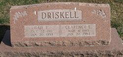 Gail E <i>Litson</i> Driskell