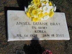 Ansel Duane Bray