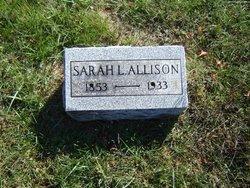 Sarah L Allison