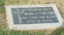 Mary J Fortune
