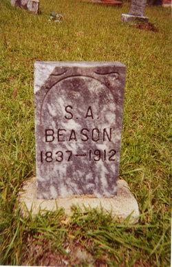 Sarah Ann <i>Davis</i> Beason