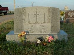 Andrew J Dreiling