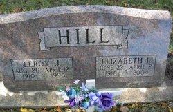 Elizabeth Irene <i>Nordstrom</i> Hill