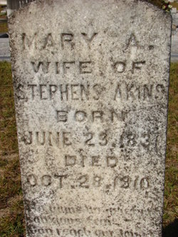 Mary Ann <i>Bennett</i> Akins