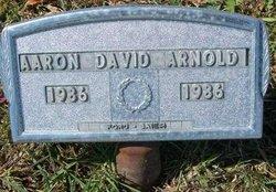 Aaron David Arnold