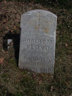 Robert M Floyd