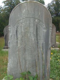 Betsey E. Palmer