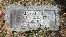 Marzie B. Tripp