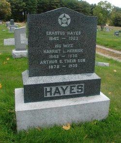 Arthur G Hayes