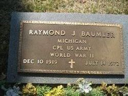 Raymond J Baumler