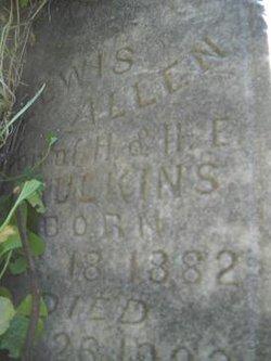 Lewis Allen Caulkins