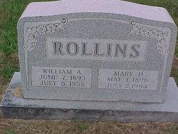 Mary Dewey <i>Boyce</i> Rollins