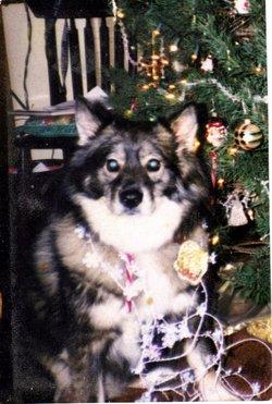 Reba <i>Dog</i> Geyer