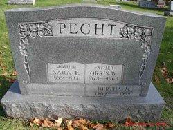 Bertha M Pecht