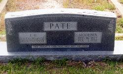 Dicey Modenia <i>Peace</i> Pate