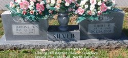 Albert R. Silver