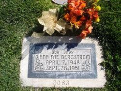 Diana Fae Bergstrom
