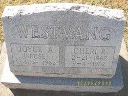 Joyce Arlene <i>Kruse</i> Westvang