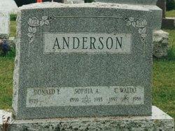 Sophia Amelia <i>Friedland</i> Anderson