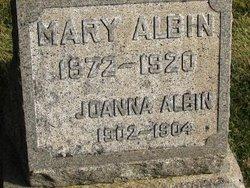 Joanna Albin
