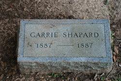 Carrie Shapard