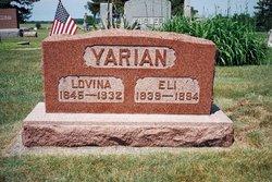 Lovina Viola <i>Berlin</i> Yarian