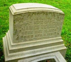 Anna Montgomery <i>Murry</i> Verner