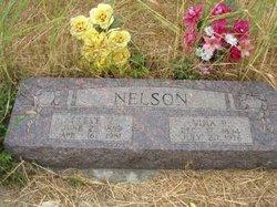 Vina R <i>Parker</i> Nelson