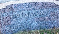 Anna J Brinkman