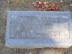 Andrew Jackson Gibbons