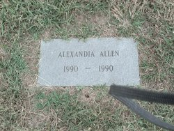 Alexander Allen