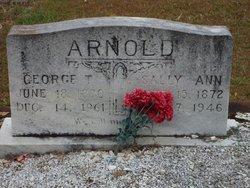 Sally Ann Arnold