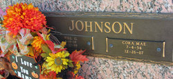Will C Johnson