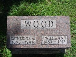 Catherine Ash <i>Botkin</i> Wood