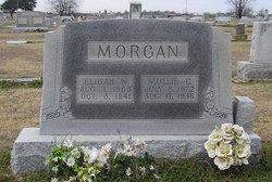 Mollie C. Morgan