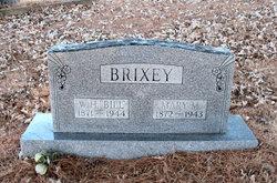 Mary Melissa <i>Walker</i> Brixey