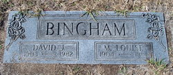 David J Bingham