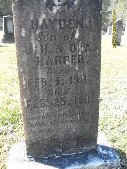Hayden Harper
